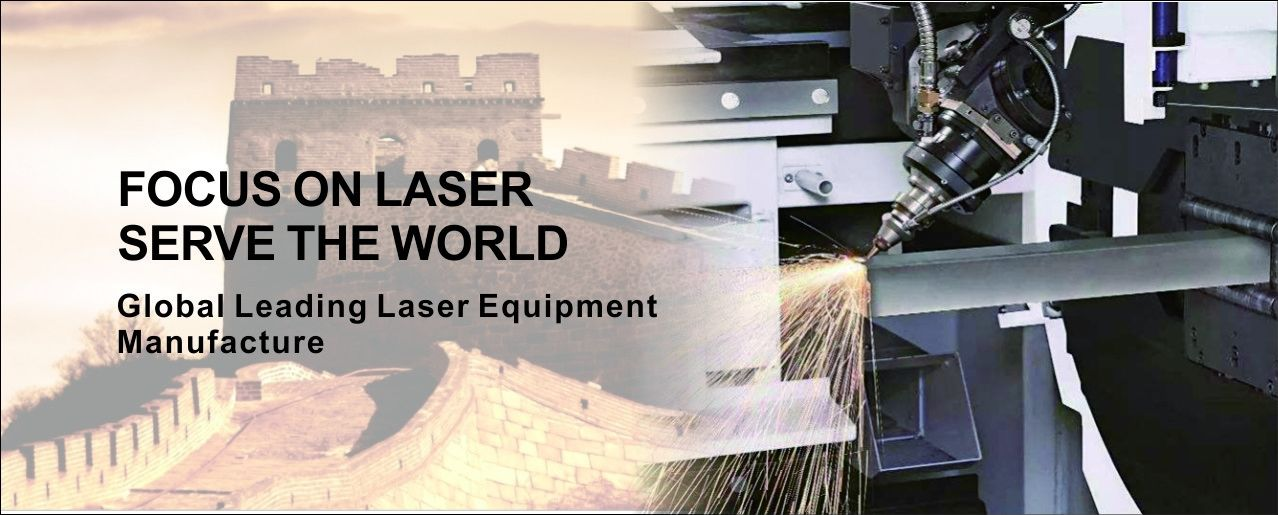China best Automatic Laser Marking Machine on sales